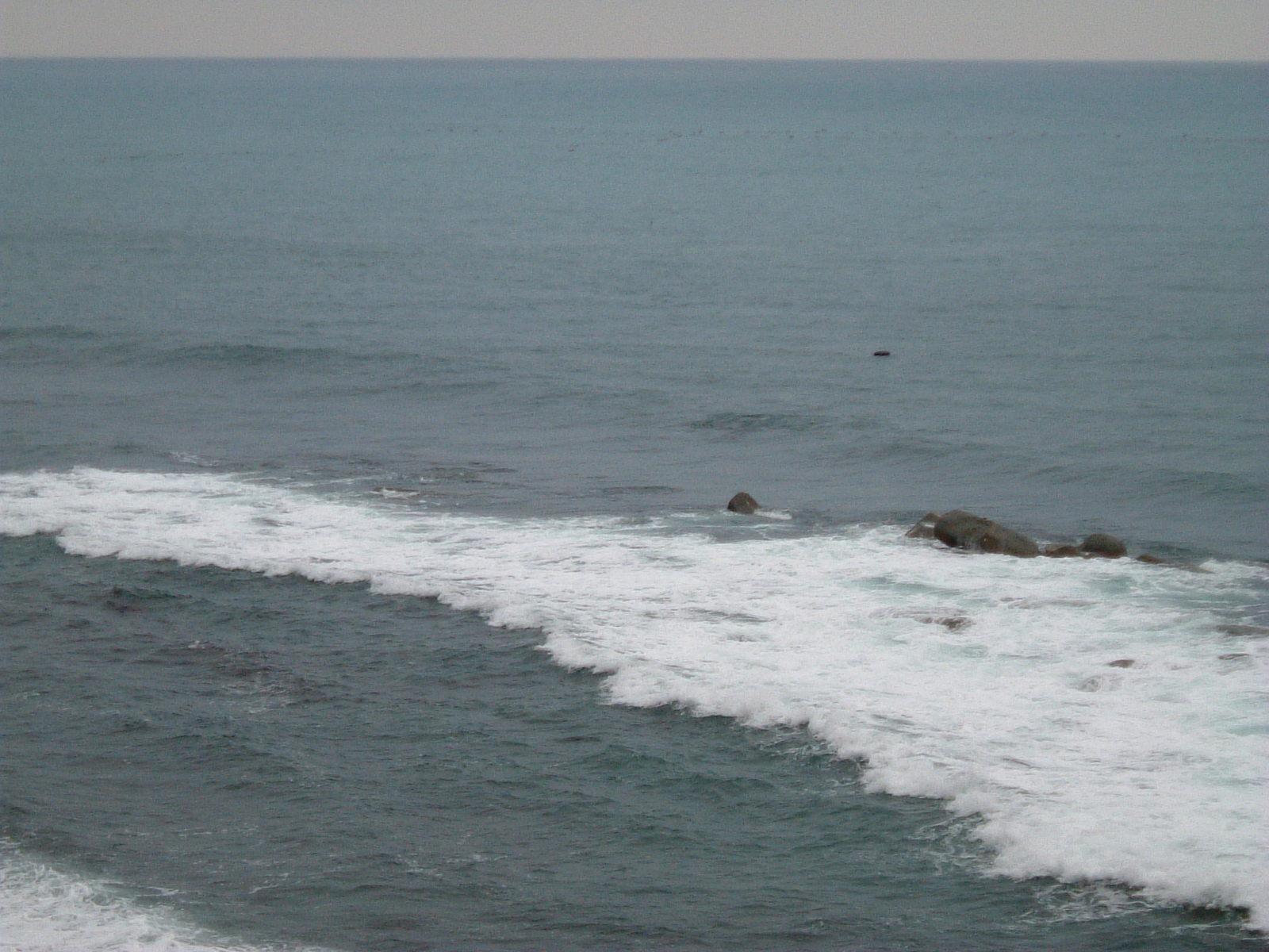 2010_02280005 これは津波なのか、自然の波なのかわかりませんが、大きな波でした。ちょ